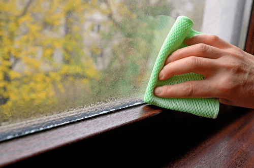 Person Cleaning Window and Window Sill